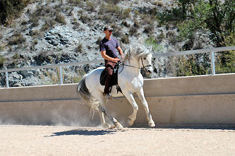 Workshop Sanftes Reiten Andalusien