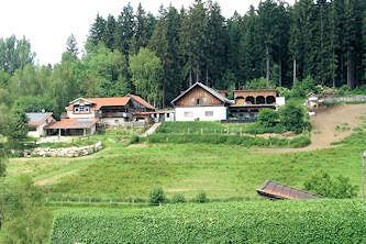 reiterferien reiturlaub im naturpark bayerischer wald auf norikern bayern deutschland mit. Black Bedroom Furniture Sets. Home Design Ideas