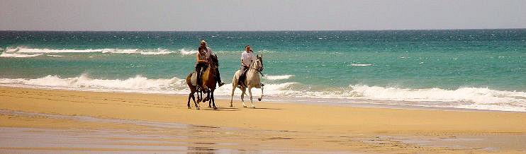 Pferd Reiten Traum Das Reiten Ist Ein Traum–