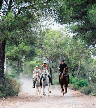 reiterferien / reiturlaub auf mallorca, balearen, spanien auf, Hause und Garten