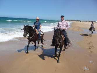 spanisches pferd sm diskrete treffen